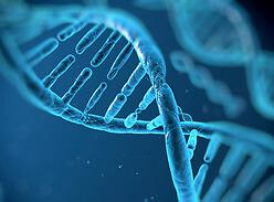 Взаимосвязь генетики и онкологии