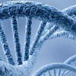 Метод CEL-Seq поможет в лечении онкобольных